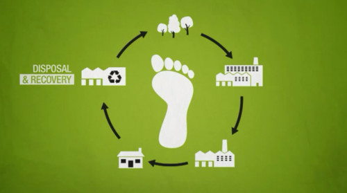 reduce your ecological footprint essay Ecological footprint essaysas you read down through my ecological  it's a  matter of math that a reduced meat lifestyle has less impact on the environment.