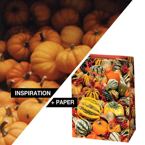 INSPIRATION-PAPER_pumpkin2