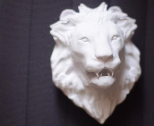 3D-lionhead