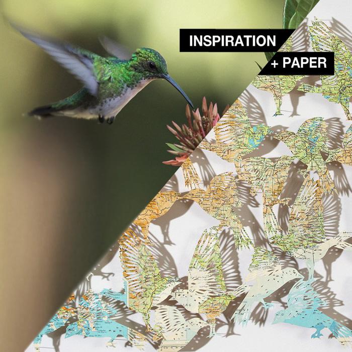 INSPIRATION-PAPER_clairebrewster