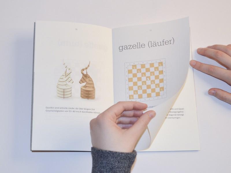 diy.chess4