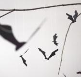 DIY Bat Mobile – Halloween Decoration