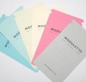 Meet Moduletto
