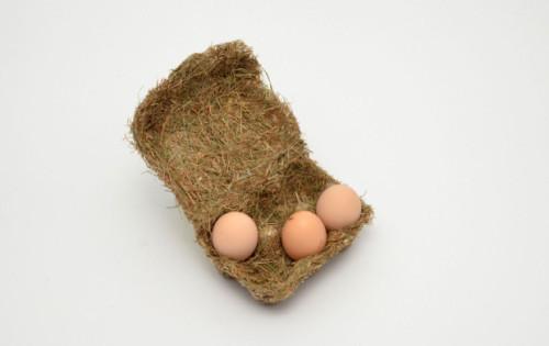 happy-eggs-2