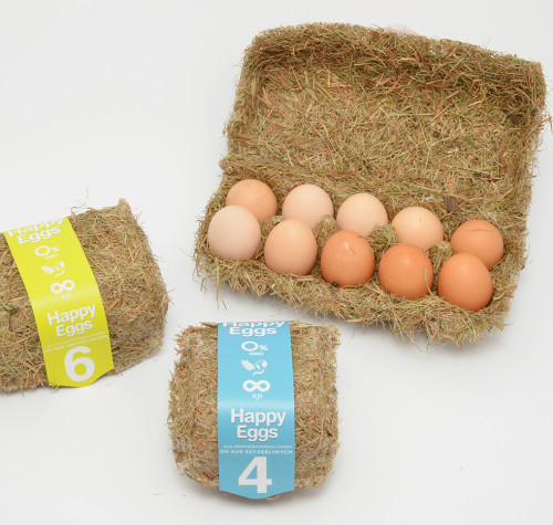 20+ Inspirational Egg Carton Designs