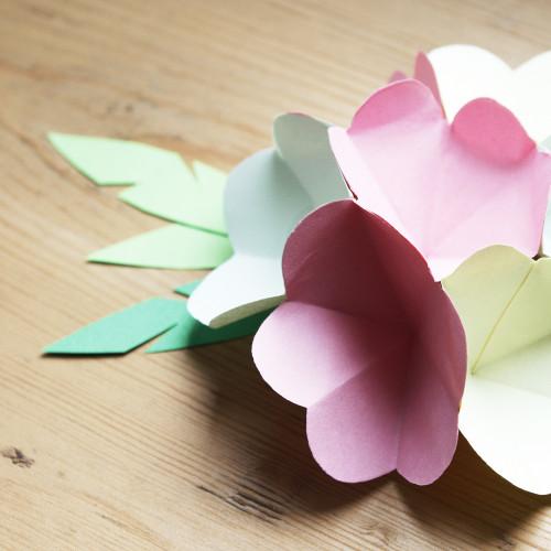 Diy pop up flower bouquet mightylinksfo