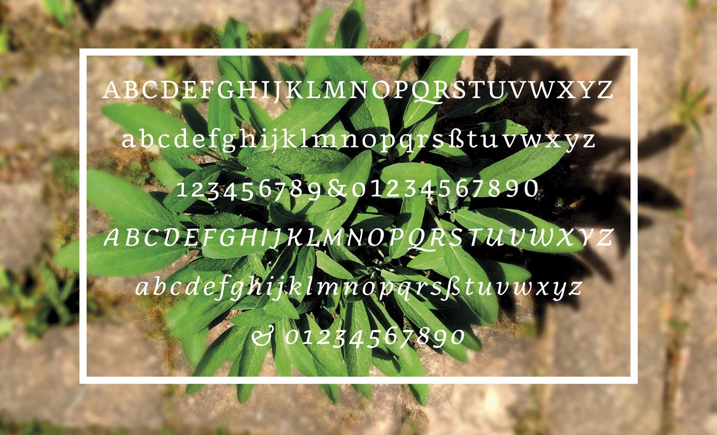 df57e560b726f054dd48d5c61c8238e8