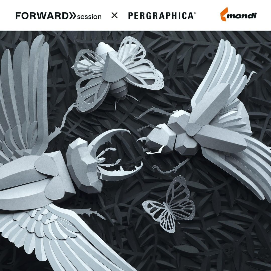 The Forward Session X PERGRAPHICA® in Vienna
