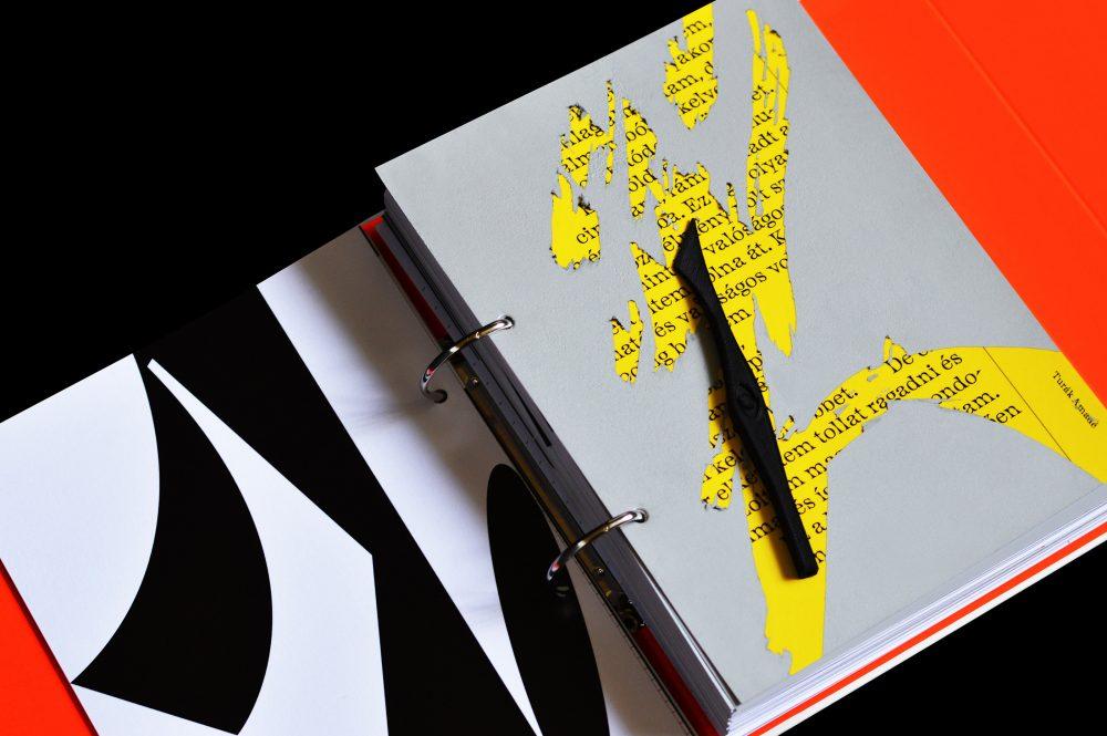 Visuality of Schizophrenia book by Adrienn Csaszar