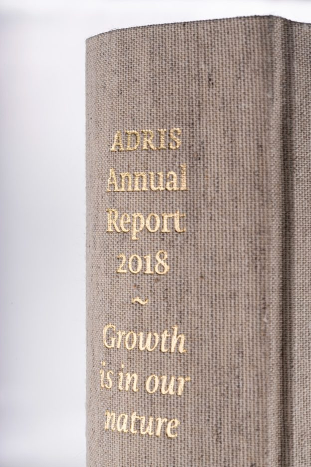 A Pink & Gold Annual Report Inspired by the Financial Times
