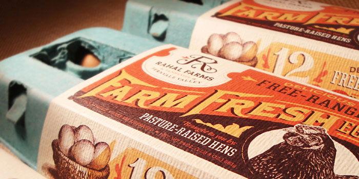 Eggellent Egg Packaging Design: Traditional vs Innovative