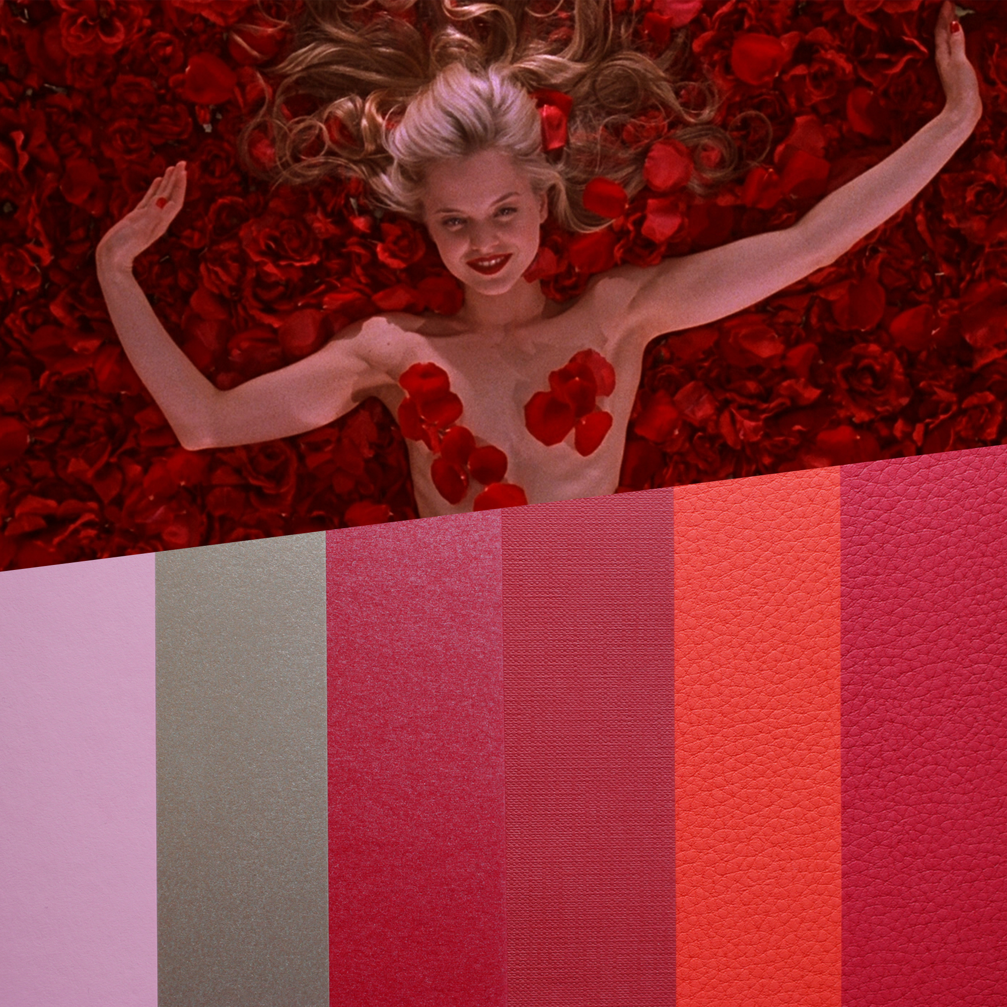 design papers collections inspired by an iconic movie scene - american beauty