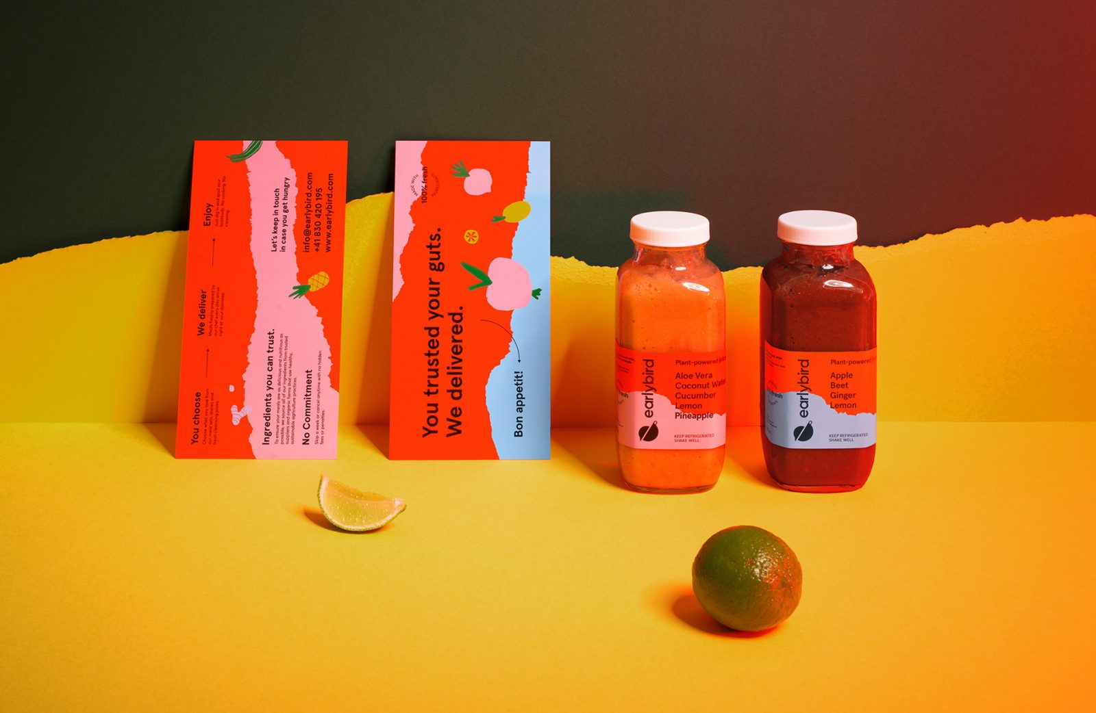 Fresh & Fun Earlybird Food Delivery Identity and Packaging by NECON