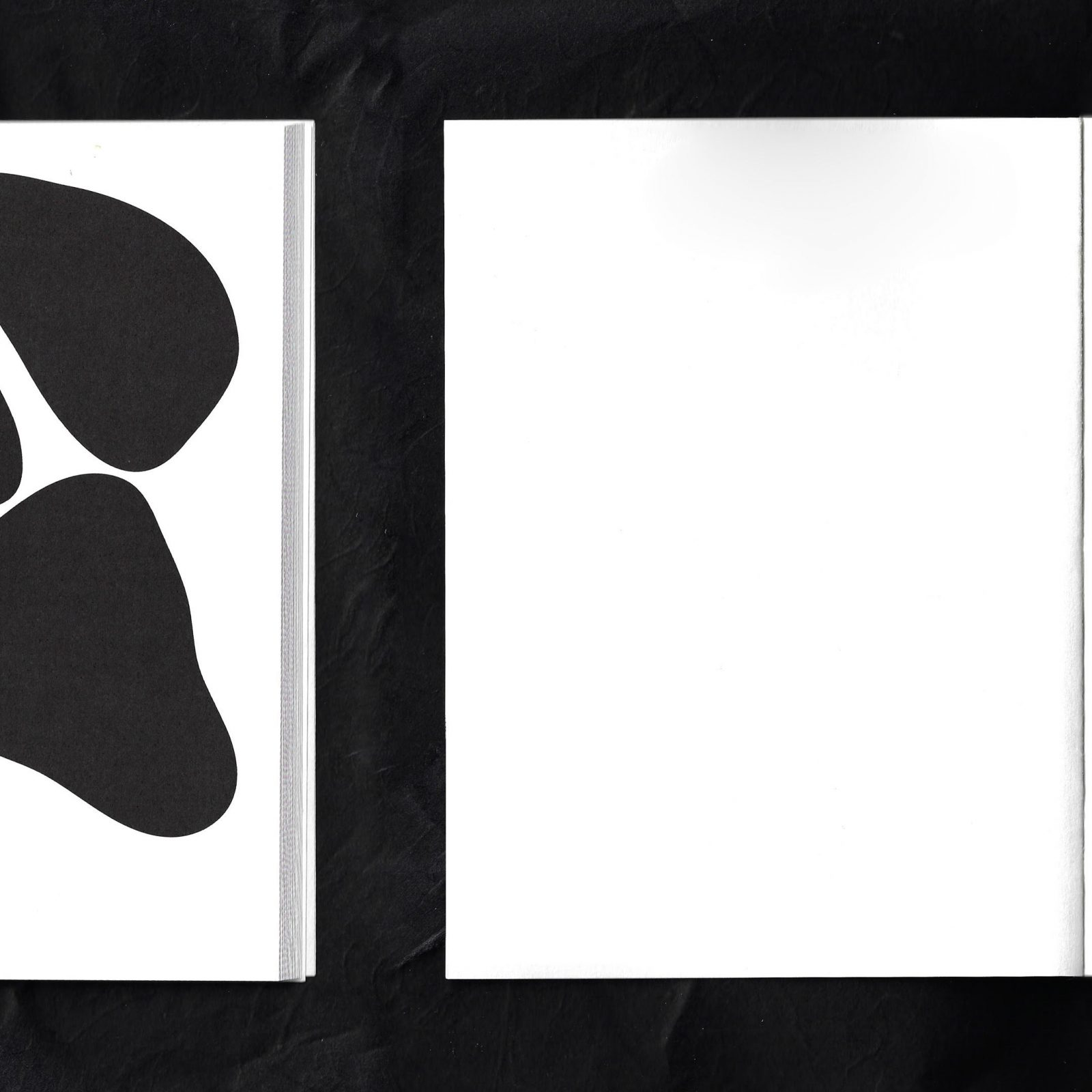 Donau Book by CinCin Captivates With Minimal Design, and beautiful papers