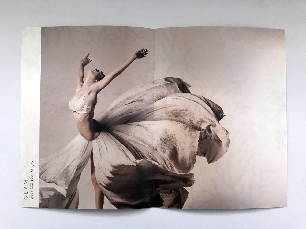 Artistic portrait of a dancer