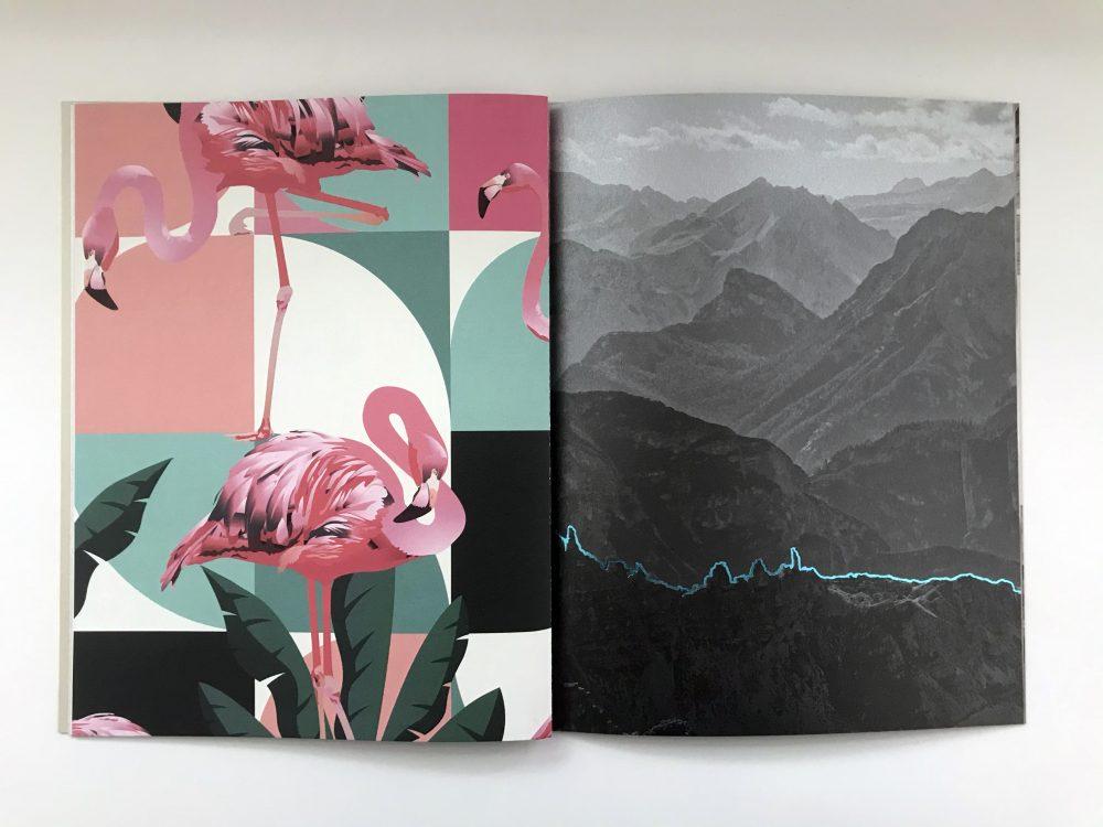 Vivid colours flamingo illustration.